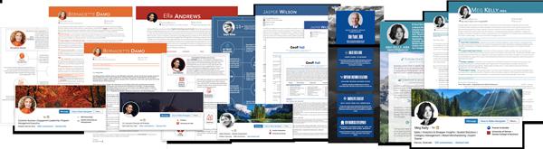 Resume Cover Letter LinkedIn Development Infographic